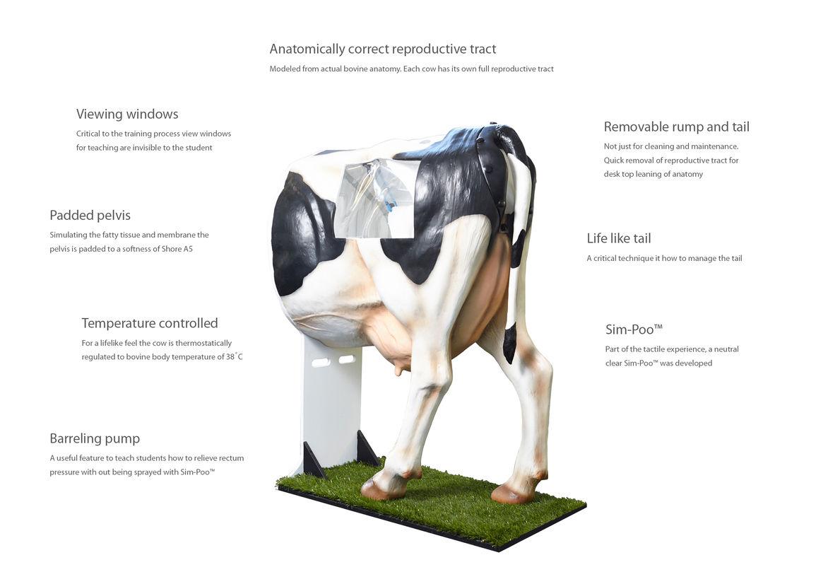 Henryetta AB Sim Cow | Best Awards